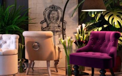 Мягкая мебель Canapes